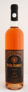 beciul-domnesc-rose-2007-cotesti-vincon_mg_9308