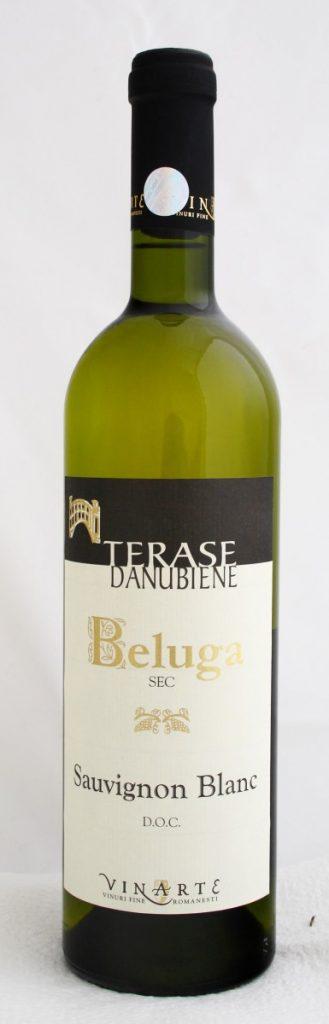 terase-danubiene-beluga-sauvignon-blanc-vinarte_mg_1582