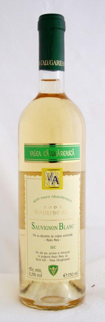 valea-calugareasca-sauvignon-blanc-2006_mg_1649