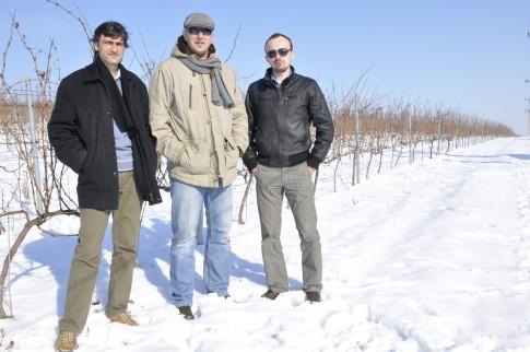 Claudiu Porumb, Rares Marinescu, Alexandru Marinescu - Domeniile Dealu Mare Urlati