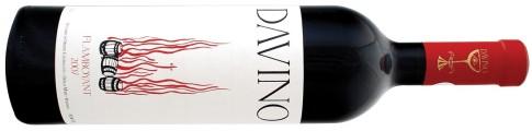 DAVINO-Flamboyant-2007_MG_2906