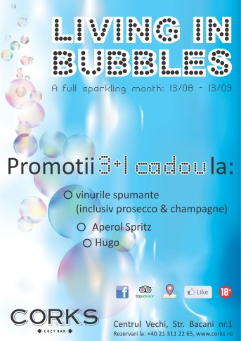 LIVING IN BUBBLES INVITATION