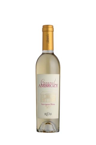 Conacul Ambrozy