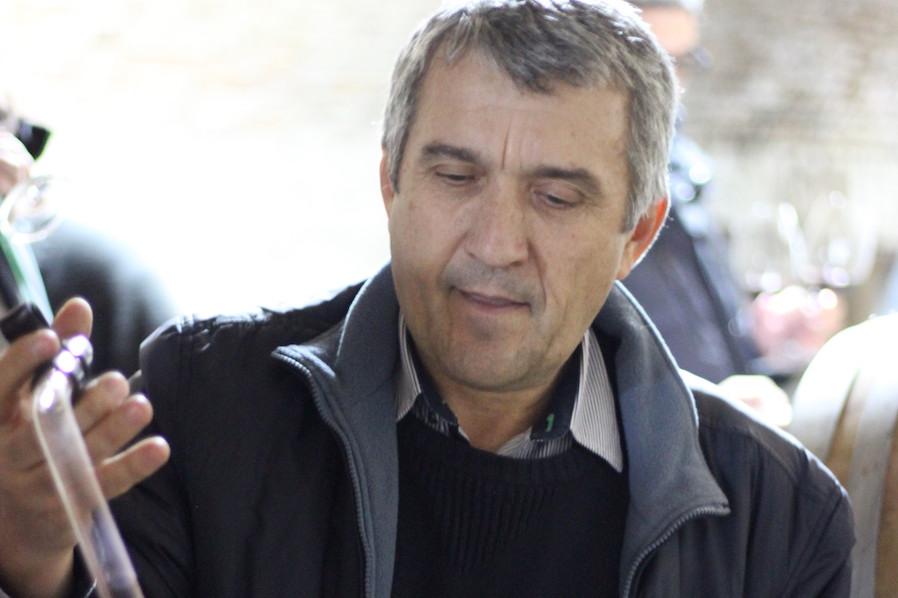 Marius Nae Vinarte Villa Zorilor