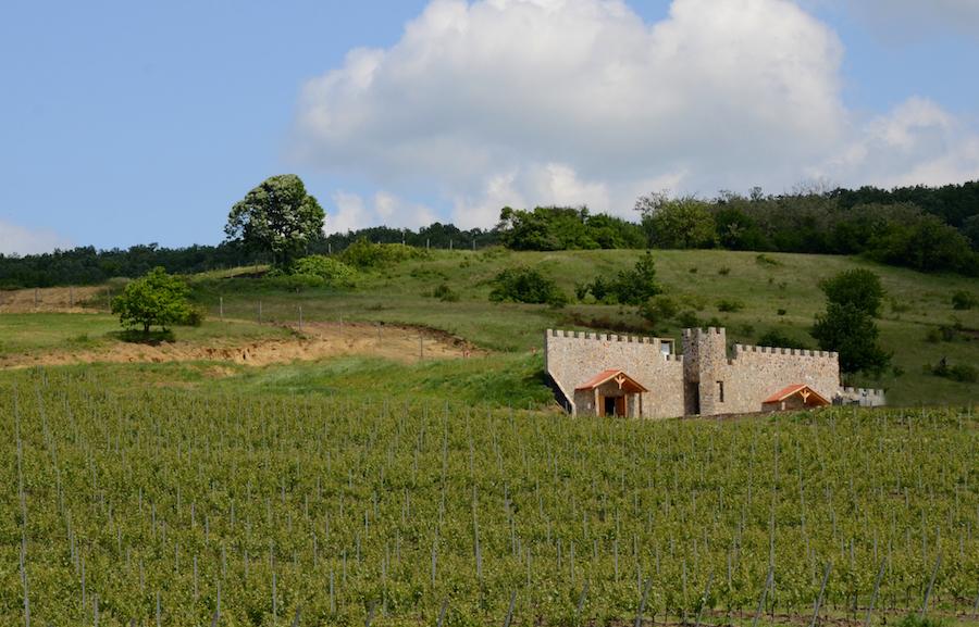 Fort Silvan deschidere site