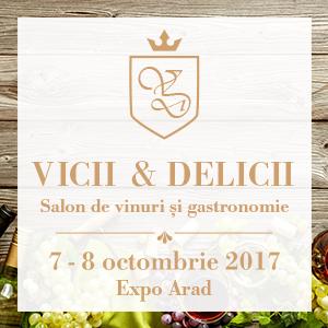 Banner Web Vicii si Delicii 300x300px