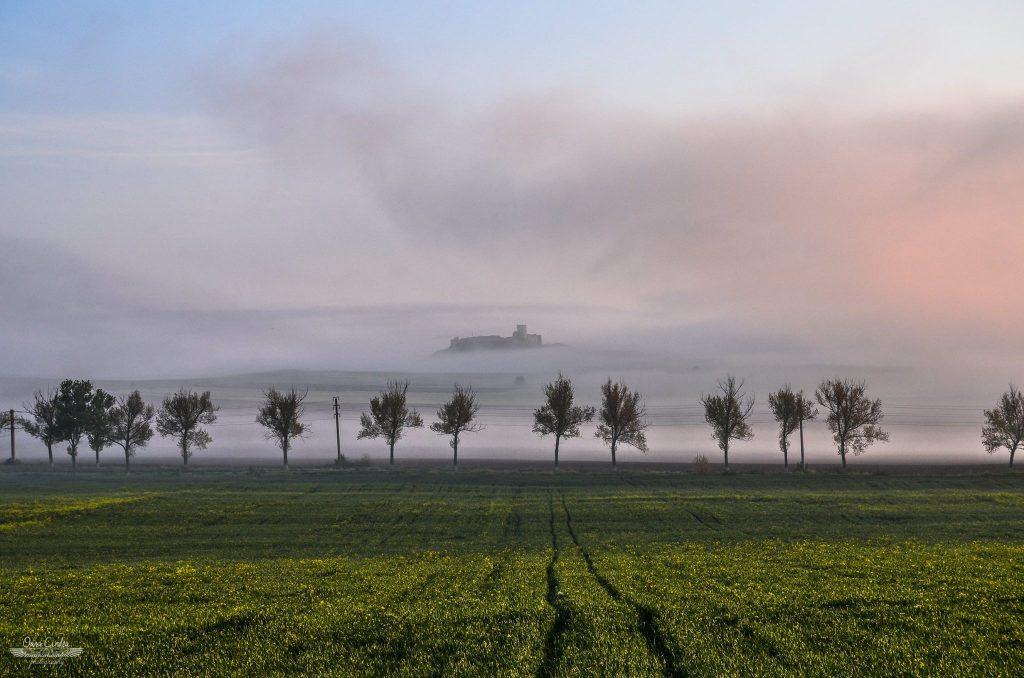 Oana Cîndea a fotografiat Cetatea Enisala din Pădurea Babadag