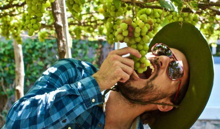 Jean Baptiste Ancelot și echipa Wine Explorers călătoresc de regulă cu o rulotă care permite o mai mare libertate de mișcare