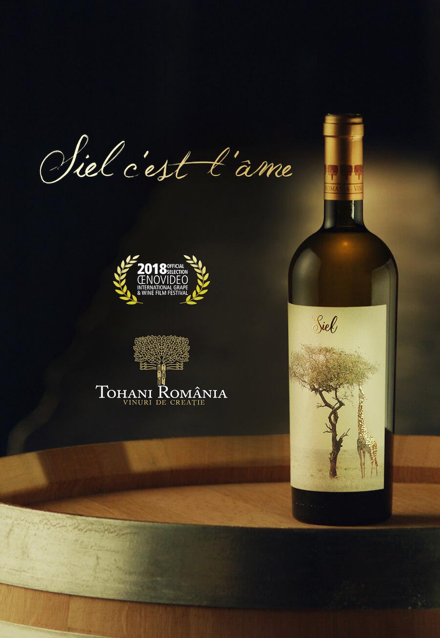 Campania Tohani România pentru promovarea vinurilor Siel s-a derulat și prin vizualuri legate de Festival