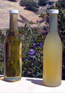 vin natural nefiltrat vs. vin obisnuit