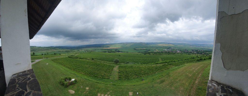 crame transilvania villa vinea