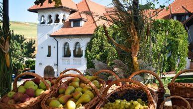 """""""Mustăria"""" de la Casa Timiș este, de fapt, o sărbătoare a recoltei în avanpremieră - cu toate roadele pământului disponibile la acel moment"""